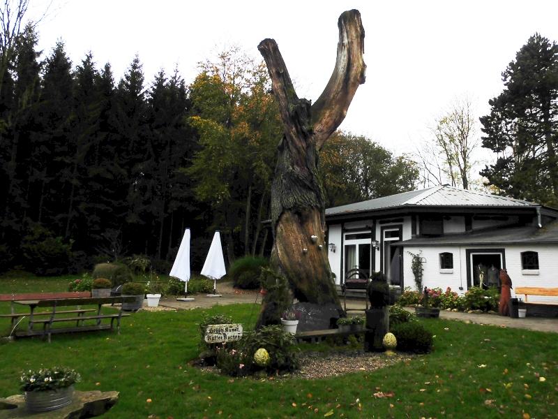Kappeln - Hüholz - Doppeleiche - Foto: Michaela Bielke (25.10.2017)