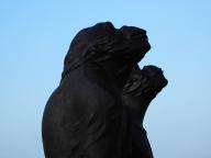 Affen auf Gut Roest - Foto: Michaela Fiering (13.02.2018)