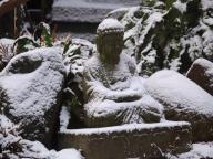Schnee von gestern - Foto: Manfred Rakoschek (2/2018)