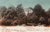 Kappeln - Hauptpastorat (um 1905)