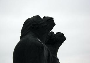 Affen auf Gut Roest - Foto: Michaela Fiering (04.02.2018)
