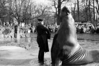 Berlin 1968 - Zoologischer Garten
