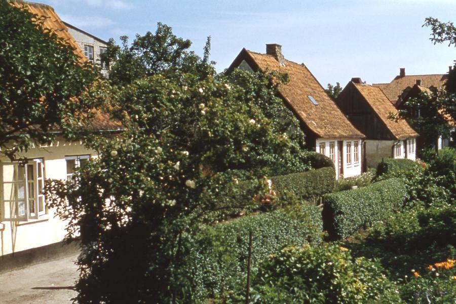 Bilderrätsel Nr. 411 - Feldstraße - Foto: Fritz Reinhardt (ca. 1957/58)