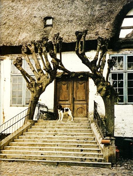 Gut Lindauhof - Foto: A. P. Peter Weiland  (ca. 1980)