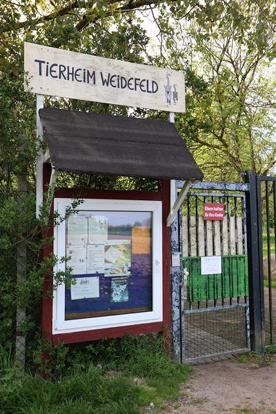 Tierheim Weidefeld - Foto: Holger Petersen (15.05.2018)