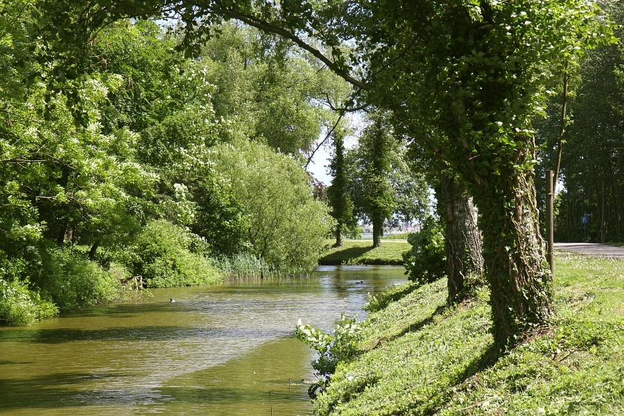 Bilderrätsel Nr. 55 - Buckhagen - Hausgraben - Foto: Holger PetersenBilderrätsel Nr. 55 - Buckhagen - Hausgraben - Foto: Holger Petersen