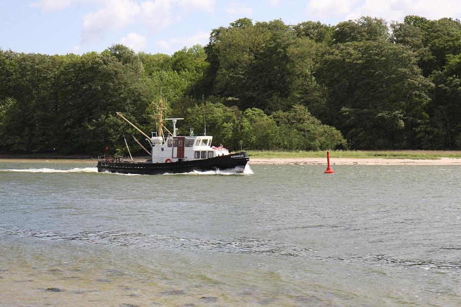 Rabelsund - KORMORAN Richtung Kappeln - Foto: Holger Petersen (2009)
