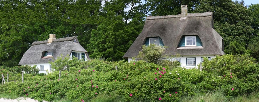 Rabelsund - Foto: Holger Petersen (2009)