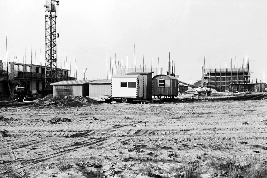 Ellenberg 1967