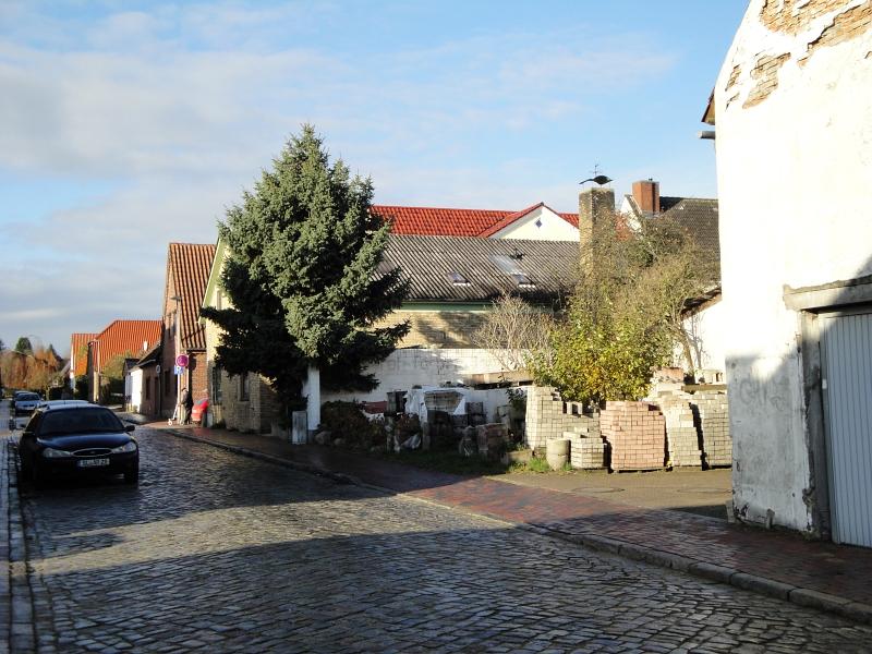 Prinzenstraße - Foto: Michaela Bielke (11.11.2012)