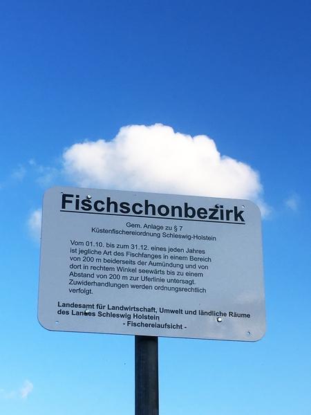 Fischschonbezirk - Foto: Runa Borkenstein (30.07.2020)