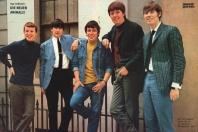 The Animals (Musik Parade 42/1965)