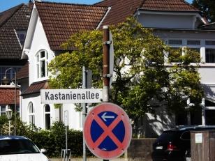 Kastanienallee - Foto: Michaela Fiering (14.06.2020)