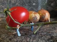 Küchenpersonal - Foto: Manfred Rakoschek