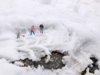 Schnee von (vor)gestern - Foto: Manfred Rakoschek (2/2016)