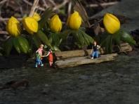 Spring - Foto: Manfred Rakoschek
