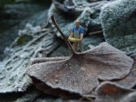 Landarbeit - Foto: Manfred Rakoschek