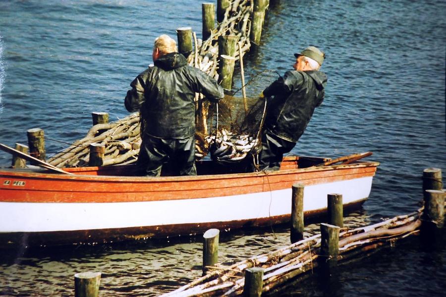 Kappeln - Heringswette 1988