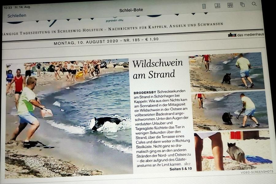 Schlei-Bote (EPaper) vom 10. August 2010