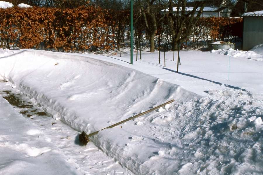 Theodor-Storm-Straße 24 - Foto: Fritz Reinhardt (26.02.1979)
