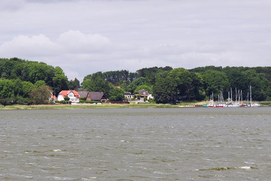 Ulsnis - Foto: Holger Petersen (2014)