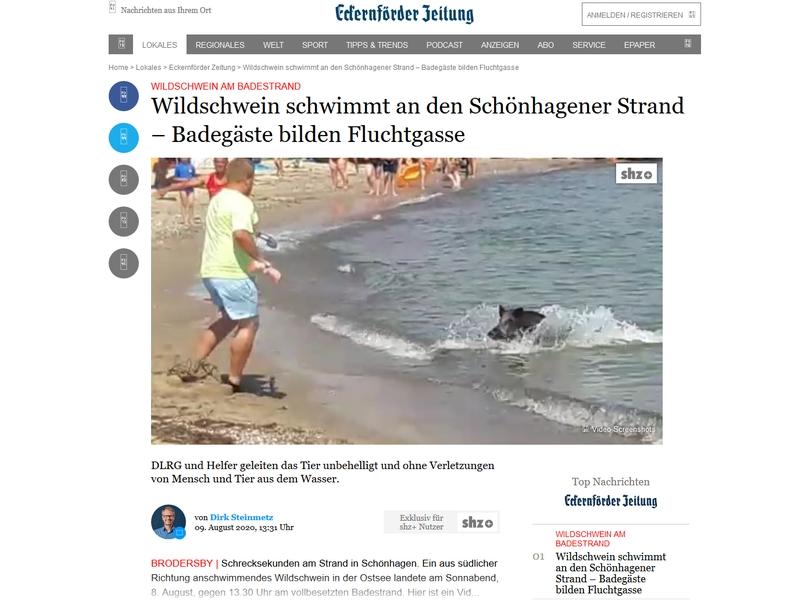shz.de vom 9. August 2010