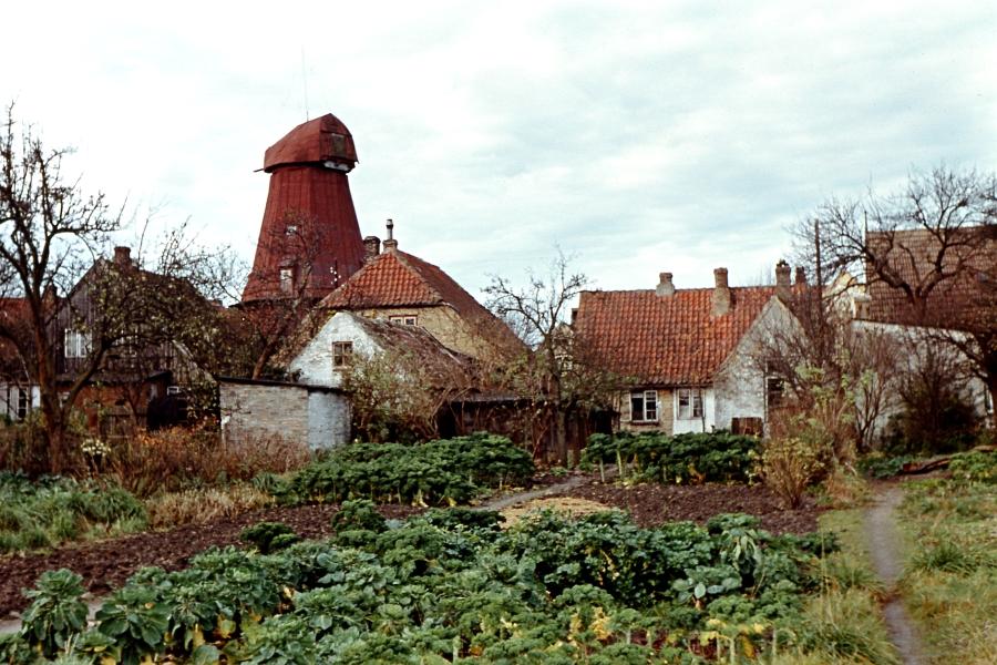 Arnis - Mühle - Foto: Fritz Reinhardt (etwa 1955)