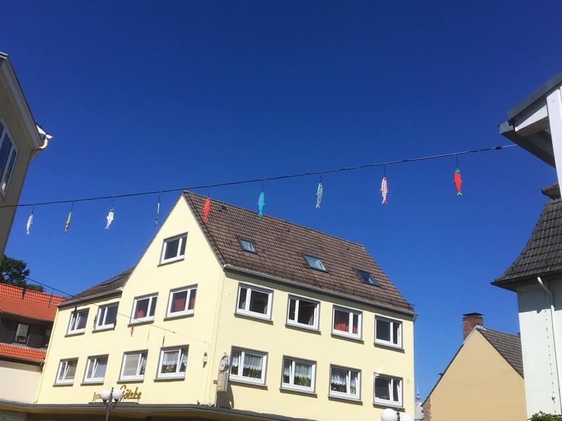Heringswette 2021 - Foto: Runa Borkenstein (08.06.2021)