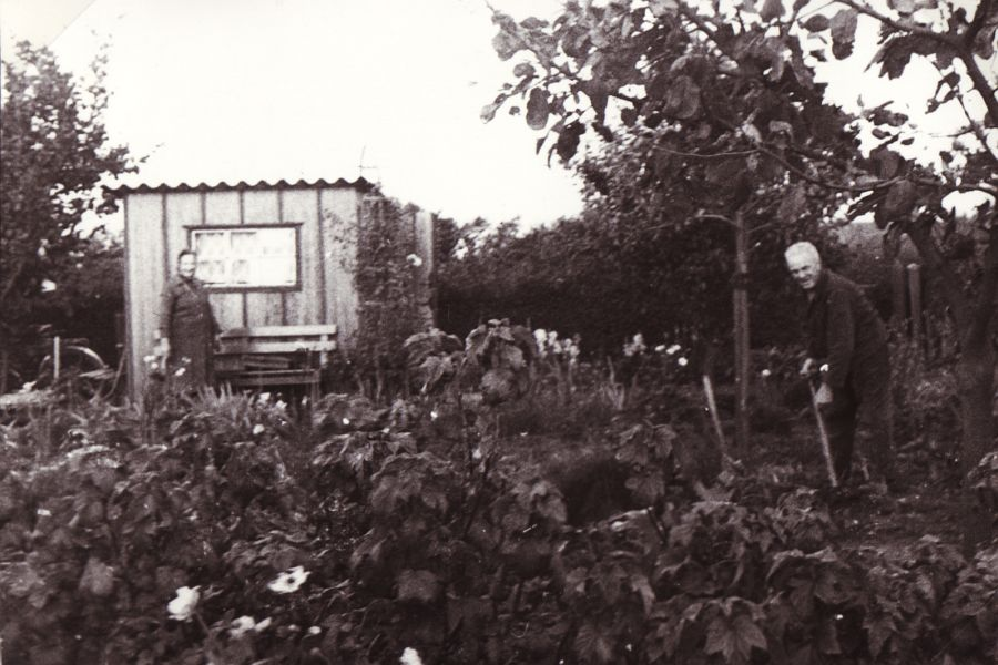 Kappelholz - Schrebergarten (1965)