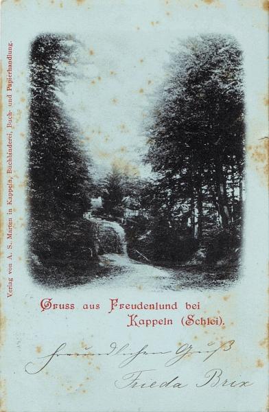 Freudenlund - Historische Ansichtskarte (1899)