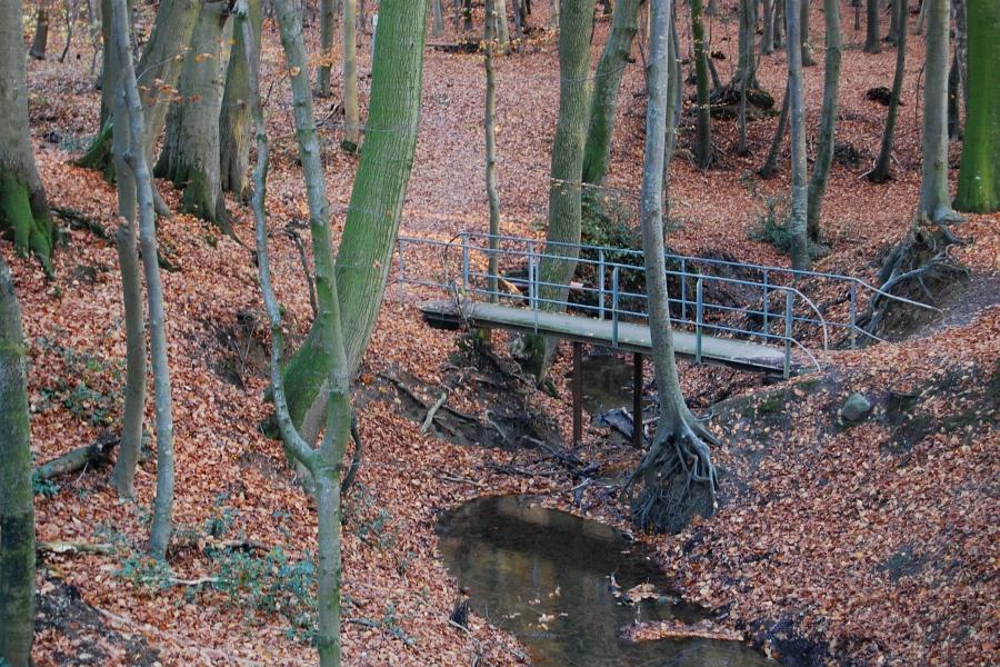 Kappeln - Teufelsbrücke - Foto: Ulli Erichsen (2012)