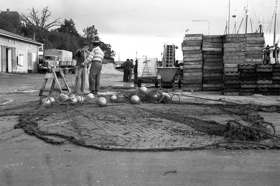 Kappeln - Fischereihafen (Oktober 1968)