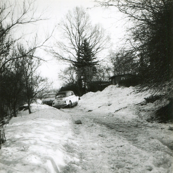 Levensau 1979