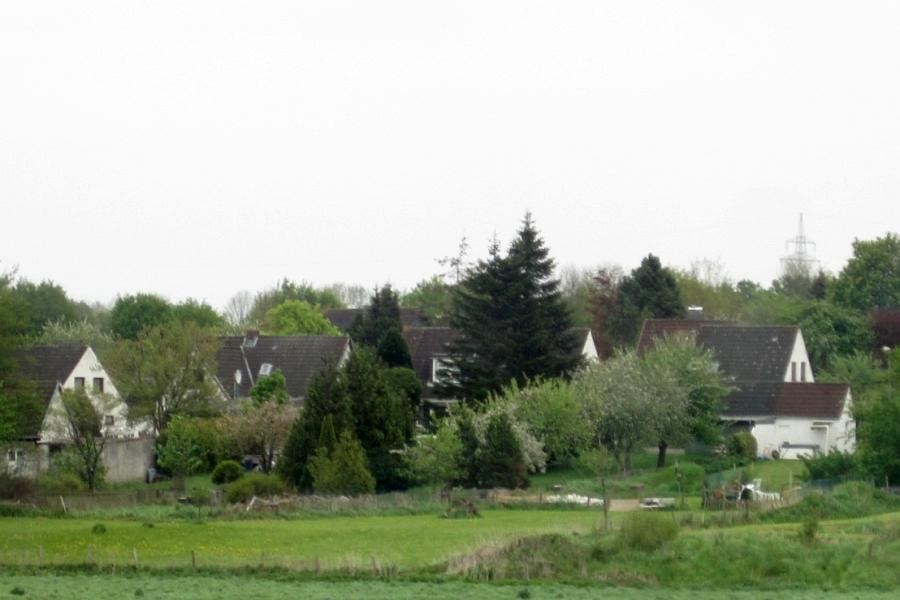 Heidesiedlung - Foto: Runa Borkenstein (2012)