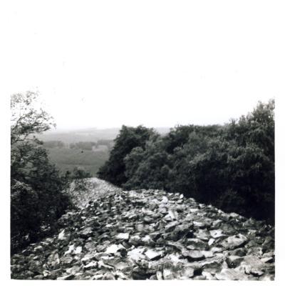 Ringwall von Otzenhausen 1965 (1)