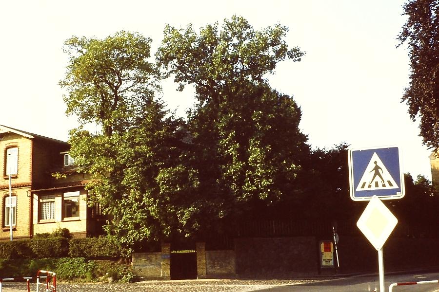 Kappeln - Hospitalstraße 2  - Foto: Asmus Peter Weiland